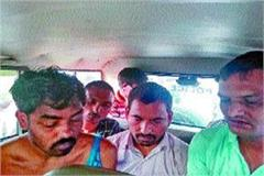 21 cow dynasty container collides with tree 3 accused arrested