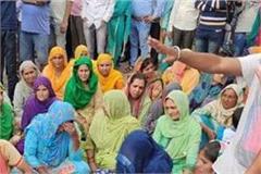 hamirpur nurse suicide case