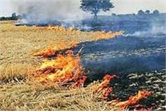 administration strict on burning stubble 30 farmers invoiced