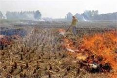 up action taken on stubble burners till 20 report sought from officials