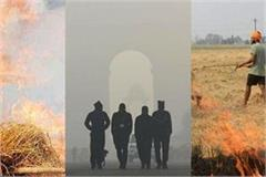 cases of stubble burning increased punjab