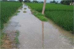 20 acres of paddy filled water due to minor breakdown farmers are suffering