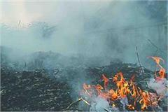 corporation incurred fine of 5 thousand for burning garbage