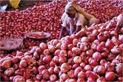 onion prices getting lower