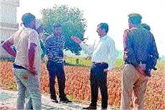 sdm appealed to farmers not to burn stubble