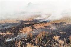 burning stubble makes people hard to breathe