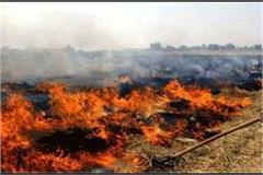 haryana burns straw 6 139 place in 51 days kaithal number one