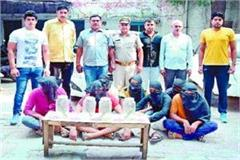 attempt to rob police heavy on looters 7 crooks including 4 pistols arrested