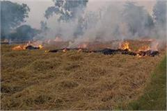 now information about stubble burning will be received from satellite