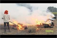 strict action on burning of straw in mohali