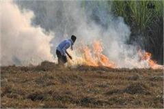 case filed against 12 for burning stubble