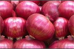 congress protests in front of legislative assembly to protest onion prices
