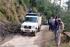 pickup jeep caught with wood driver arrested