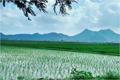 nature wrath farmers crops temperature reached 2 degrees celsius