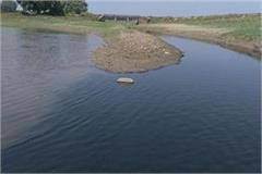 life danger water poisoning river cancer patients hepatitis c