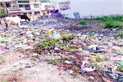 cleanliness city council instructions officials survey