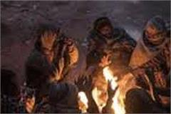 cold wave to continue in punjab till end of december