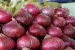 onion prices in chamba