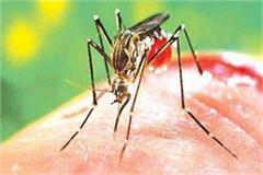 dengue youth caught broke during treatment