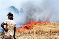 resentment in farmer organizations