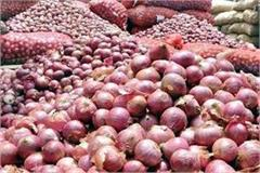 people will soon get inexpensive onion in bilaspur