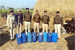 big action of poline on liquor mafia