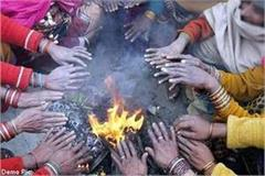 outbreak of cold wave in himachal