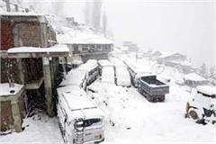 heavy snowfall in pangi