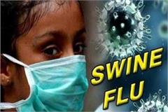 swine flu havoc in saharanpur 5 others confirmed the verdict