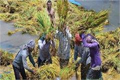 government to provide real time wallet to farmers