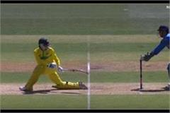 dhoni again show the kind of cheetah this kangaroo batsman wicket video