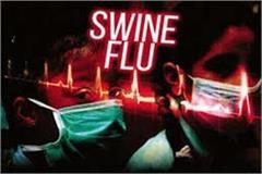 kangra tanda swine flu