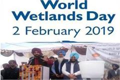 bird festival begins on world wetland day navjot singh sidhu