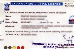 traffic rules have to be violated expensive 23 licenses will suspended