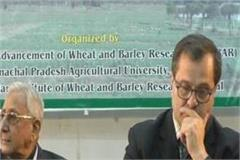 international meeting of the international group on wheat