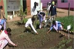 teachers  unique initiatives are being taught in the school advanced farming