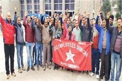 sundernagar bs nl officer employee strike
