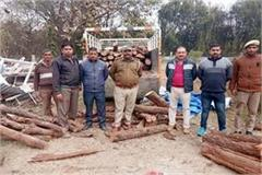 forest department caught wood in jeep