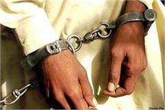 patwari arrested with money of bribe