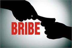 bo and watchman of forest department arrested with bribe