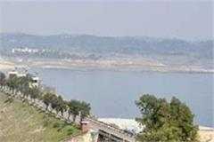 hearing on land allotment case for pong dam displaced