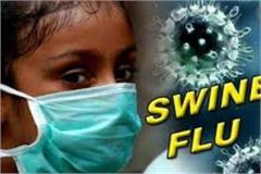 swine flu deaths due to death in mp so far 71 people lost