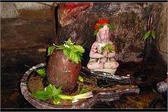 everywhere maha shivaratri s dhoom