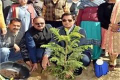 new initiative of school tribute by planting the martyrs of pulwama