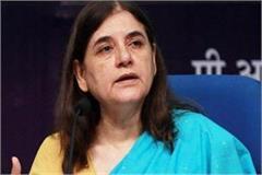 discussion stopped on menka gandhi karnal loksabha seat contesting