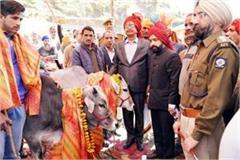 state level nalwar fair begins with bull worship