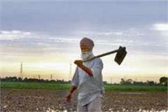 lok sabha election 2019 farmer problem in punjab