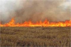 caution now if the fields will be burnt