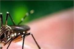 administration to prevent dengue and malaria severe
