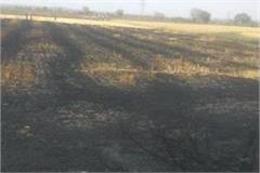 fire in farm on katni